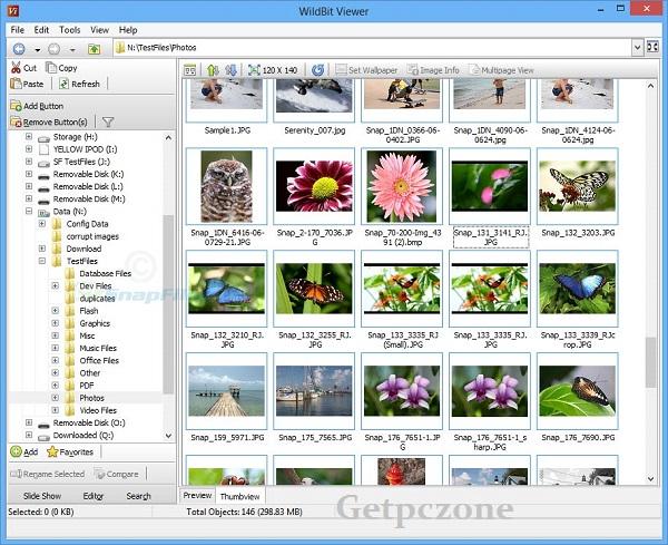 Download WildBit Viewer Free