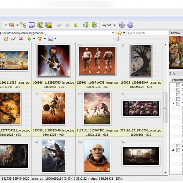 XnView 2.47 - XnViewMP 0.92 Download