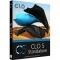 CLO Standalone 5.0 Download 64 Bit