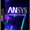 ANSYS Products 2020 R1 Multilingual Download x64