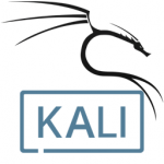 Kali Linux Live 2020.4 Download x86/x64