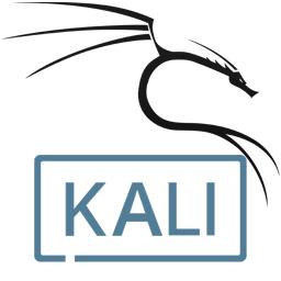 Kali Linux Live 2020.4